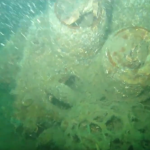 WWII bomber discovered on the Goodwin Sands